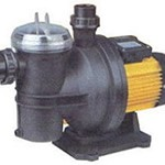 jacuzzi Jet Pumps Self Priming